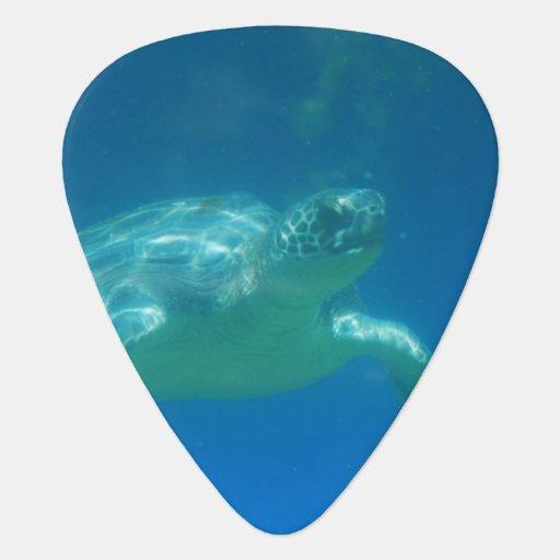 Sea Turtle Guitar Pick