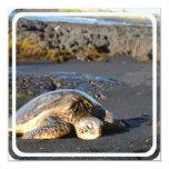 """Sea Turtle Invitation 5.25"""" Square Invitation Card"""