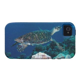 Sea Turtle iPhone 4 case