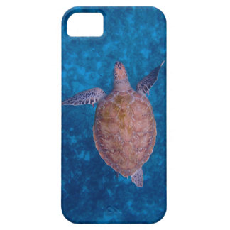 Sea Turtle iPhone Case Barely There iPhone 5 Case