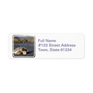 Sea Turtle Mailing Label Return Address Label