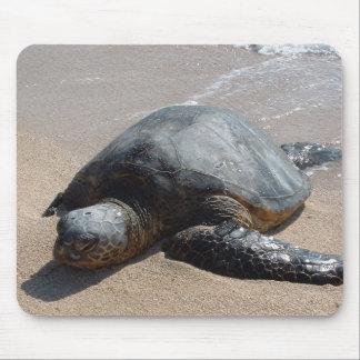 Sea Turtle - Oahu Hawaii Mouse Mat