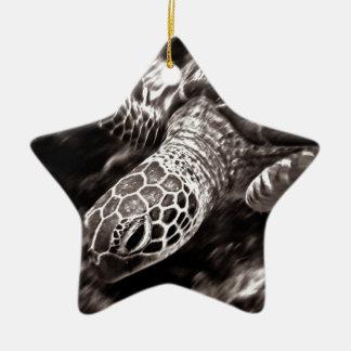Sea Turtle on the Great Barrier Reef, Australia Christmas Ornament