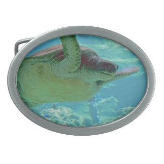 Sea Turtle Oval Belt Buckle