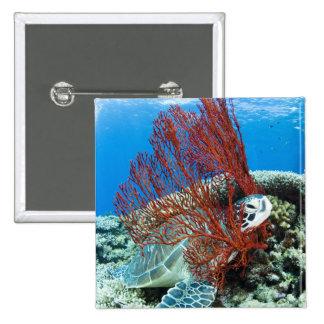 Sea turtle resting underwater 2 15 cm square badge