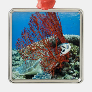 Sea turtle resting underwater 2 christmas ornament