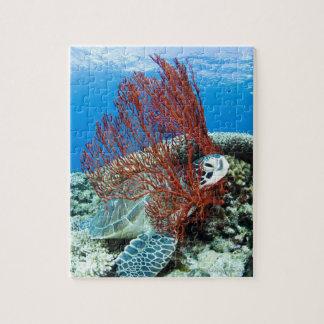 Sea turtle resting underwater 2 jigsaw puzzle
