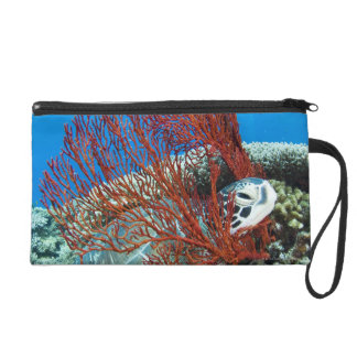 Sea turtle resting underwater 2 wristlet clutches