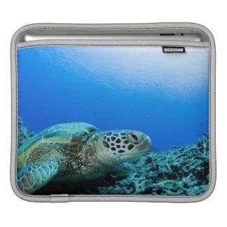 Sea turtle resting underwater iPad sleeve