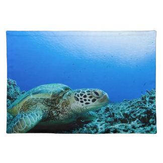 Sea turtle resting underwater placemat
