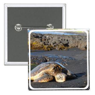 Sea Turtle Square Pin