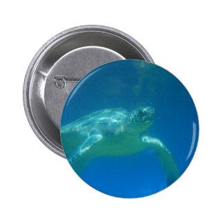 Sea Turtle Swim Pin