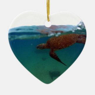 Sea turtle swimming Galapagos Islands Christmas Ornament