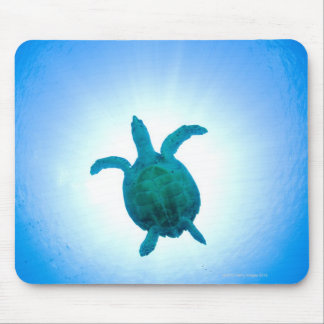 Sea turtle swimming underwater mouse mat