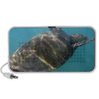 Sea Turtle swims in the water Mini Speakers
