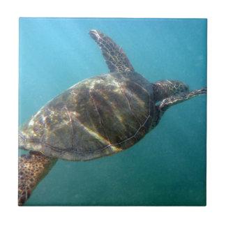 Sea Turtle swims in the water Ceramic Tile