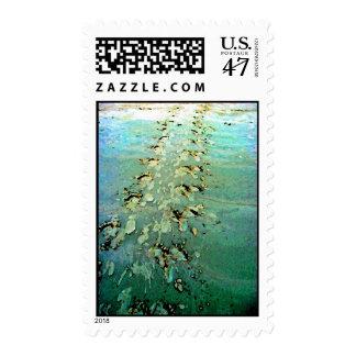 Sea Turtle Tracks Postage Stamps