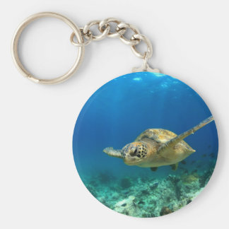 Sea turtle underwater key ring