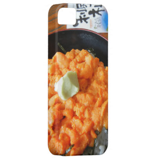 Sea urchin bowl case for the iPhone 5