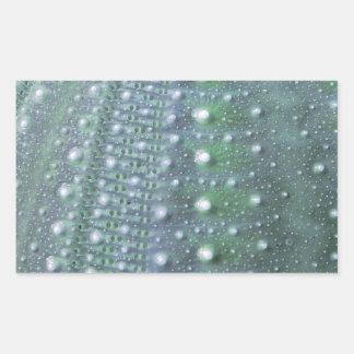 Sea Urchin-Green Rectangle Sticker