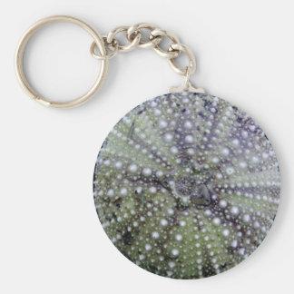 Sea Urchin Seashell Keychain