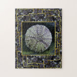 Sea Urchin Shell Jigsaw Puzzles