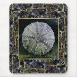 Sea Urchin Shell, Unalaska Island Mouse Pad