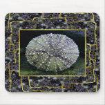 Sea Urchin Shell, Unalaska Island Mouse Pads