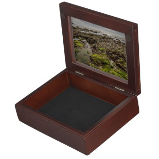 Sea weed over Rocks Memory Boxes