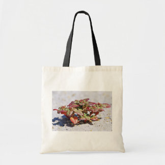 Seabeach Amaranth Canvas Bag