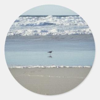 Seabird Round Sticker