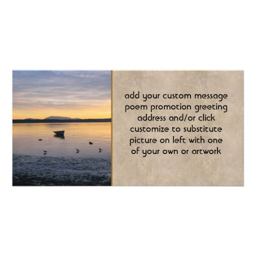 Seabirds and Boat Photo Greeting Card