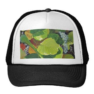 Seagrape Mesh Hat