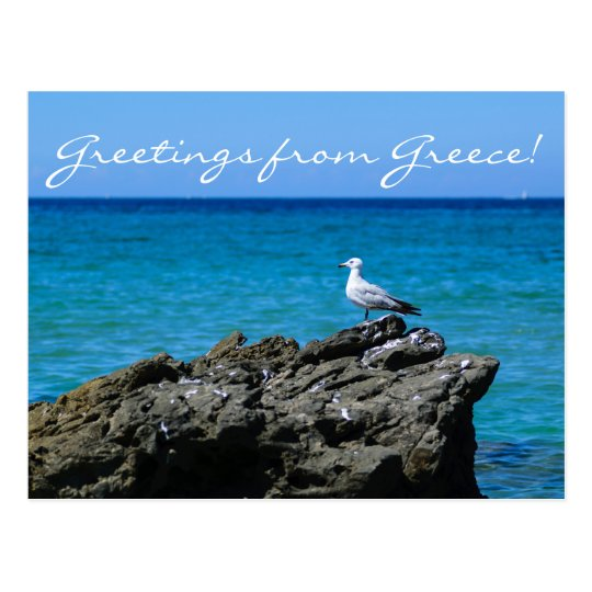 Seagull and sea personalised greeting postcard