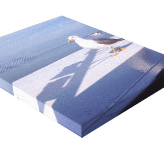 Seagull at sea canvas print