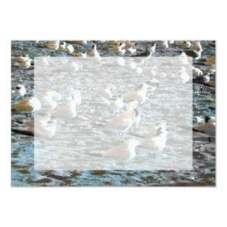seagull beach birds painted blue theme florida custom invite