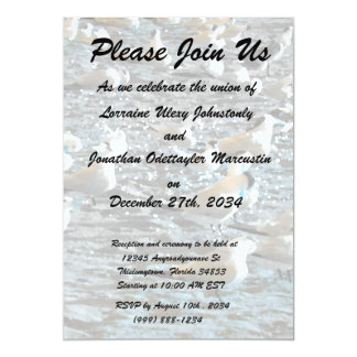 seagull beach birds painted blue theme florida custom invitations