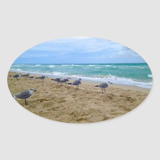 Seagull Beach Sticker
