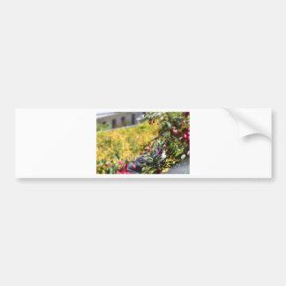 Seagull behind a field of flowers car bumper sticker