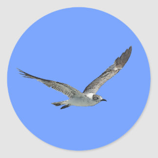 Seagull Bird Classic Round Sticker
