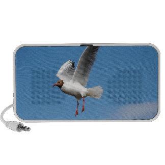 Seagull Bird Travelling Speaker