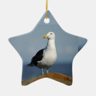 Seagull Ceramic Star Decoration
