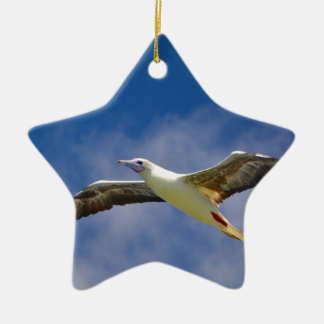 Seagull Ceramic Star Decoration