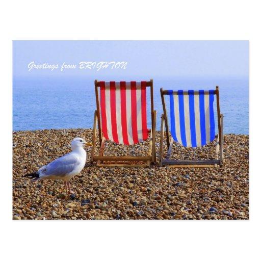 Seagull & Deckchairs Post Card