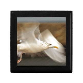 Seagull Design Gift Box