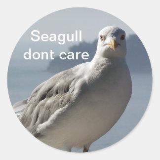 Seagull don`t care sticker