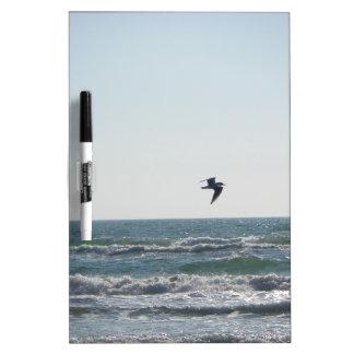 Seagull Dry-Erase Whiteboard