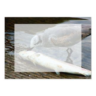 seagull eating fish painting custom invites