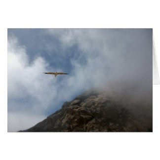 Seagull Flying by Morro Rock Greeting Card