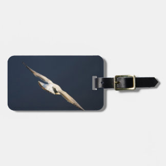 seagull flying on lake luggage tag